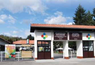 В Националното изложение в Орешак ще бъде открита изложба на творби от мозайка и каменопластики